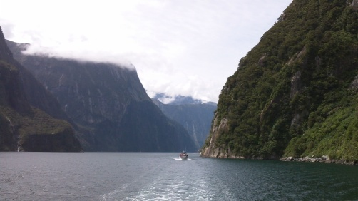 Sailing into Milford Sounds