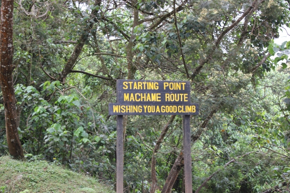 7 Day Machame Route - Climbing Mount Kilimanjaro