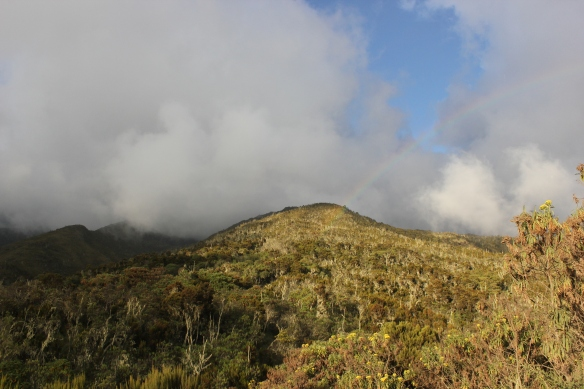 Machame Camp - Climbing Mount Kilimanjaro with Equatours Limited