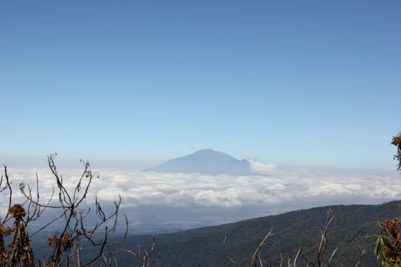 Climb Kilimanjaro 7 Day Machame Route with Equatours Limited