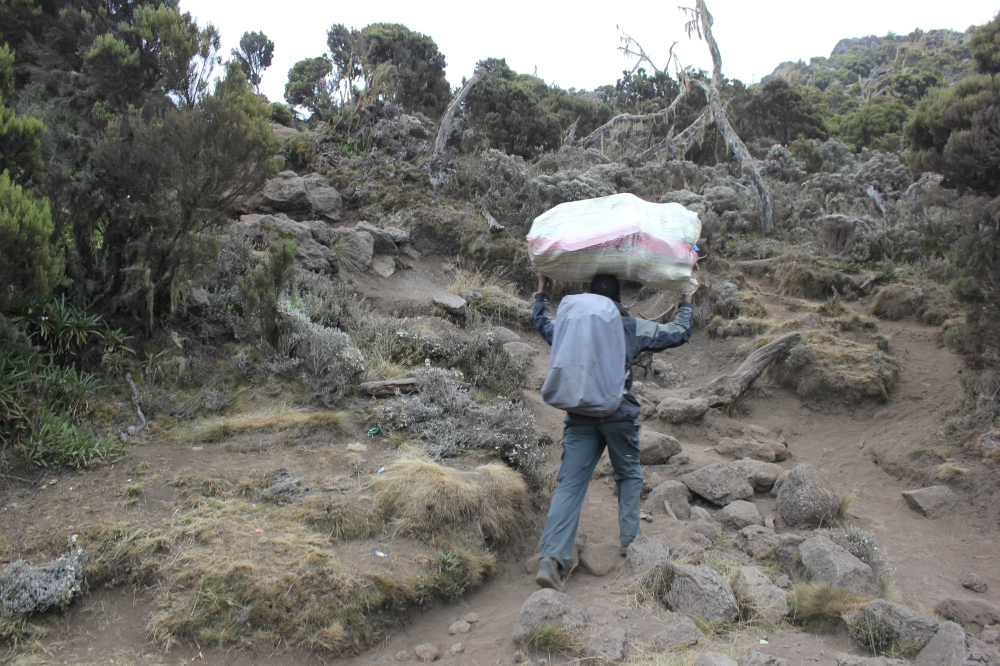 Climb Kilimanjaro 7 Day Machame Route Tour Shira Camp