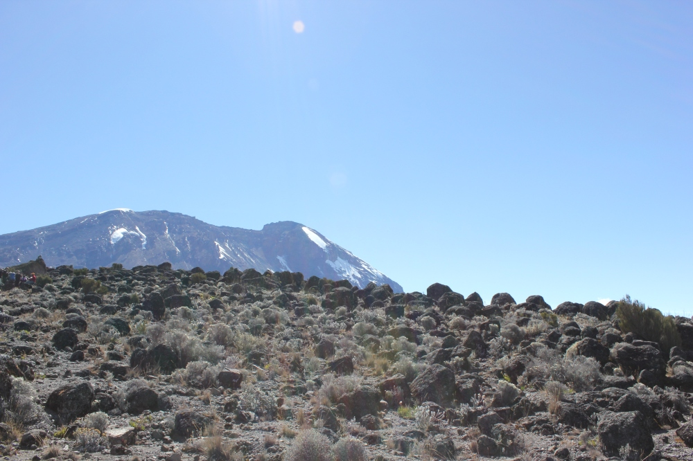 Climb Kilimanjaro 7 Day Machame Route - Day 4 Barranco Camp