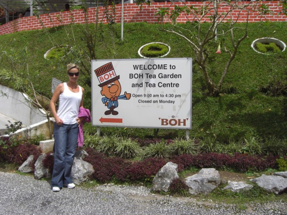 The Cameron Highlands – Anyone for a Cuppa Tea?