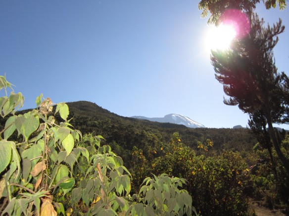 A-Z of Travel – K is for Kilimanjaro, L is for Life-Changing, M is for Mountaineering