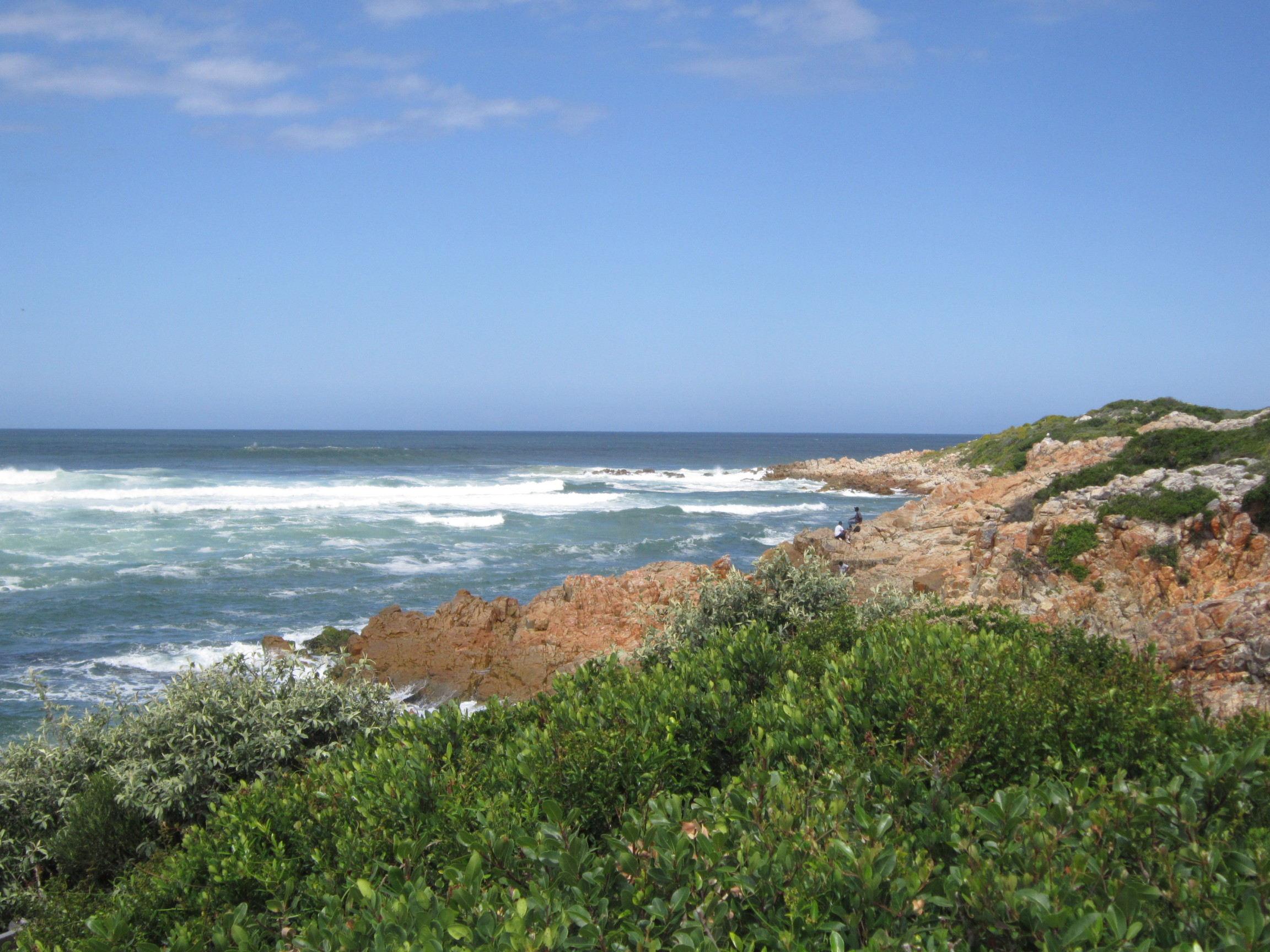 Escorted Tours South Africa Garden Route