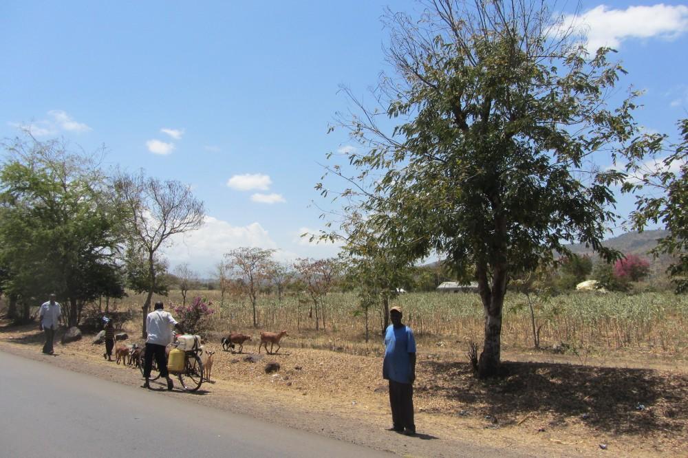 Tailor Made Holidays Tanzania