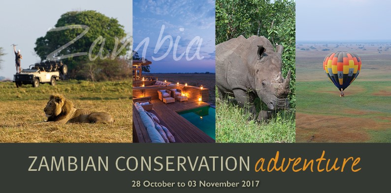 Zambia Conservation Adventure Safari