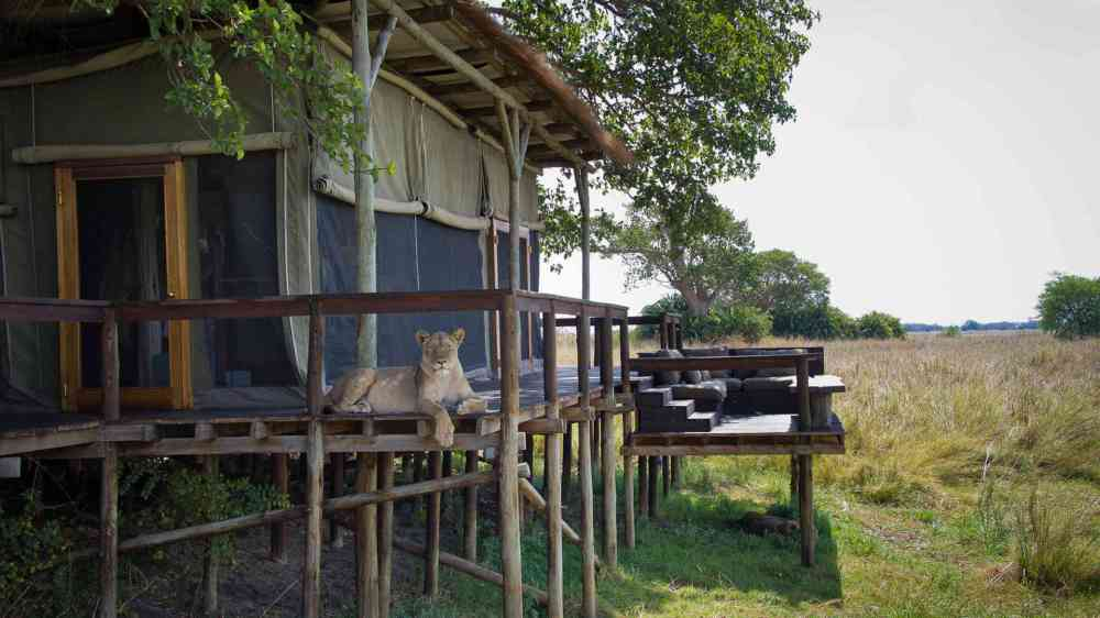 Sumba Camp Wilderness Safaris
