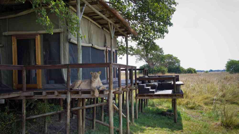 Sumba Camp Wilderness Safaris